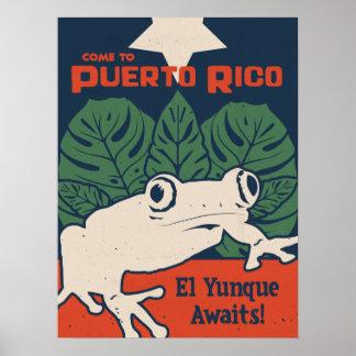 El Yunqueは待ちます ポスター