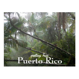 El Yunque、プエルトリコ ポストカード