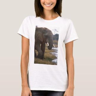 Elephand Tシャツ