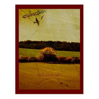 EmberTime - 「Mellowistical ポストカード