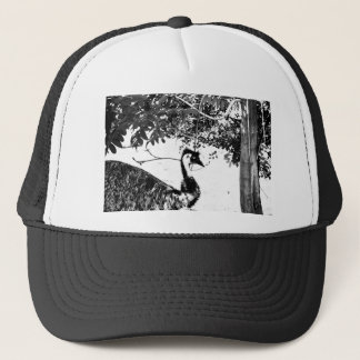 EMUクイーンズランドオーストラリアの芸術の効果 キャップ