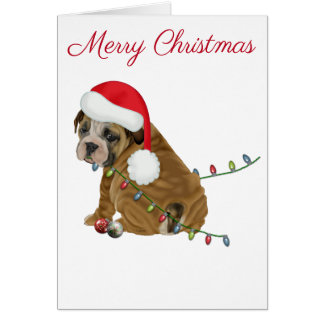 English Bulldog Puppy Christmas カード
