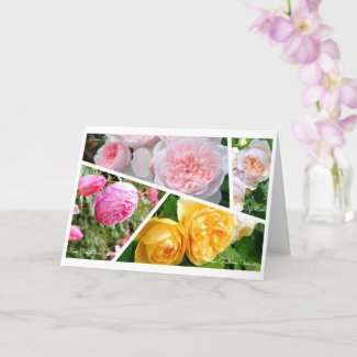 English Roses [Greeting Card] カード