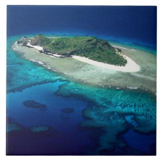 Eoriの島、Mamanucaの島、フィージー-アンテナ タイル