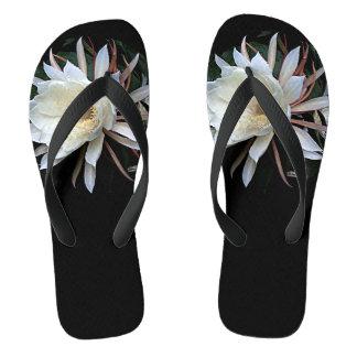 Epiphyteのサボテンの花 ビーチサンダル
