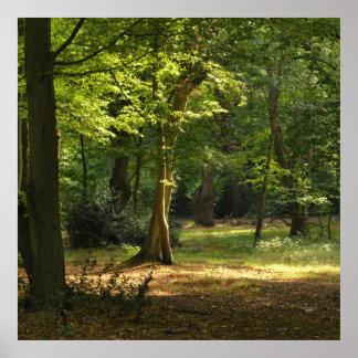 Eppingの森林 ポスター