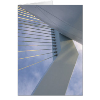 Erasmus橋、ロッテルダム カード
