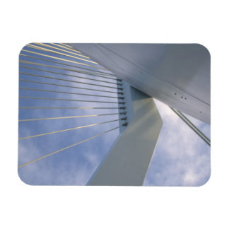 Erasmus橋、ロッテルダム マグネット