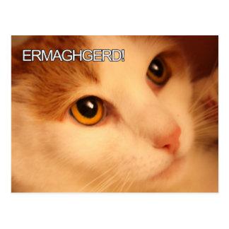 Ermahgerdかわいい猫の郵便はがき ポストカード