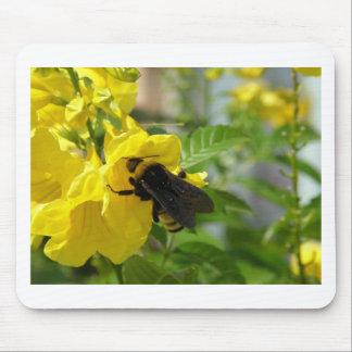 Esperanzaの花の《昆虫》マルハナバチ マウスパッド