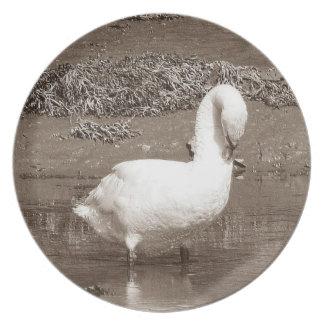 Esturyの干潮を立てているデボンの南白鳥 プレート
