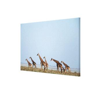 Etoshaの国立公園、ナミビア2 キャンバスプリント