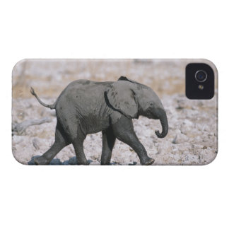 Etoshaの国立公園、ナミビア Case-Mate iPhone 4 ケース