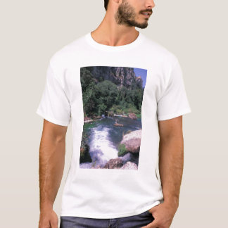 EU、フランス、プロバンス、Frontaine deボークリューズ Tシャツ