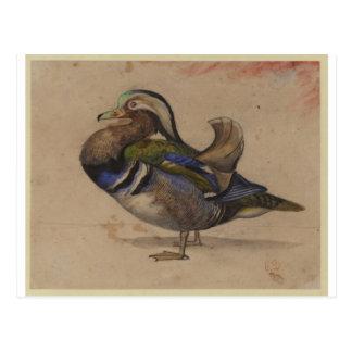 Eugene Delacroix著マンダリンの竜 ポストカード