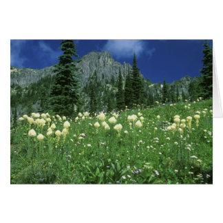 eunice湖、レーニア山NP、WAのBeargrass、 カード