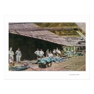 Eurekaの石板石切り場の労働者の眺め ポストカード
