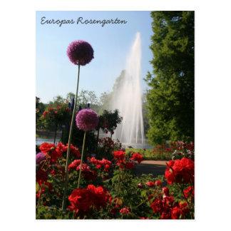 Europas Rosengarten ポストカード