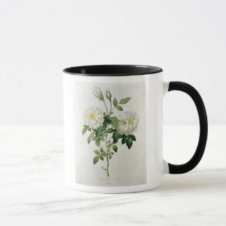 Eustache Hyacintheが刻むAime Vibere マグカップ