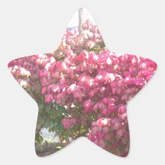 Exoticeの花DIYのテンプレートのサービス品のパーティーのギフト 星シール