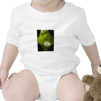 Eye Can See Baby Bodysuits