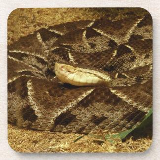 Eyelessヘビ コースター