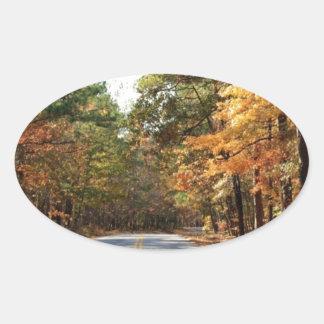 F.D. ルーズベルトの州立公園-マツ山、ジョージア 楕円形シール