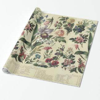 Faded Vintage Flower Botanicals ラッピングペーパー