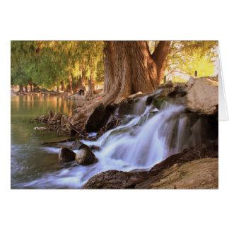 Fairmount公園-川岸 グリーティングカード