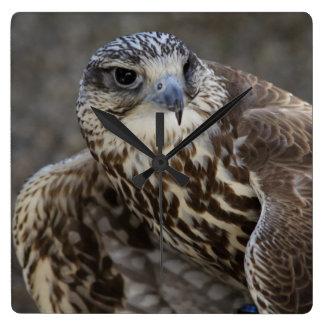 Falcoのcherrug スクエア壁時計
