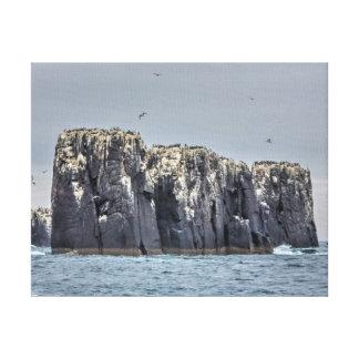 Farneの島の崖 キャンバスプリント