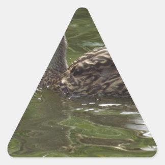 Fav少しduckie 三角形シール