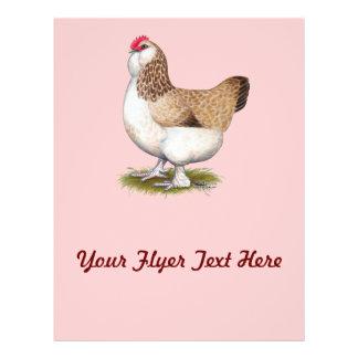 Faverolleのサーモンピンクの雌鶏 チラシ