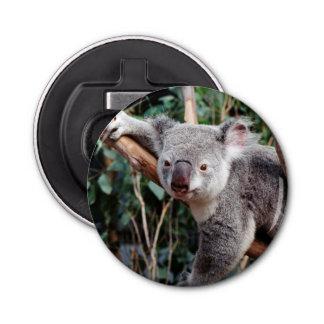 Featherdaleの野性生物公園、コアラ 栓抜き