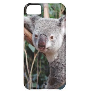 Featherdaleの野性生物公園、コアラ iPhone5Cケース