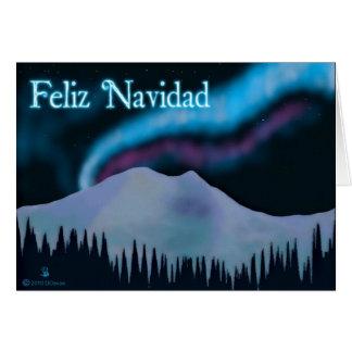 Feliz Navidad -青いオーロラ カード