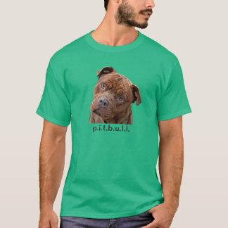 "Fidoの男性Tシャツのためのピットブルの""ベンツ""塀"" Tシャツ"