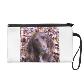 Field_spaniel.png リストレット