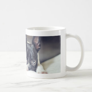 Finaボストンテリア コーヒーマグカップ