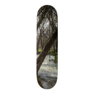 Finleyの川の春 スケートボード