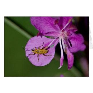 Fireweedの虫; カスタマイズ可能 カード