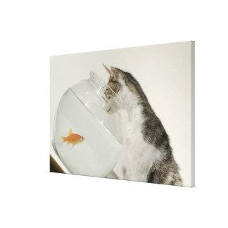 fishbowlの魚を見ている猫 キャンバスプリント