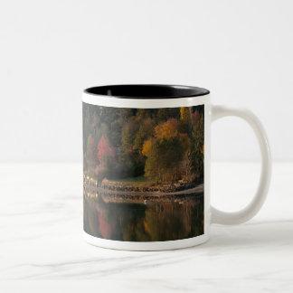 Fletcher湾 ツートーンマグカップ