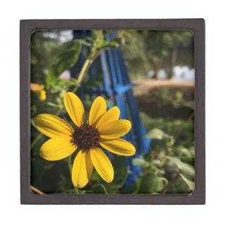 flower1.jpg ギフトボックス