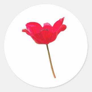 Flower23 ラウンドシール