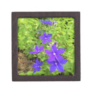 flower6.JPG ギフトボックス
