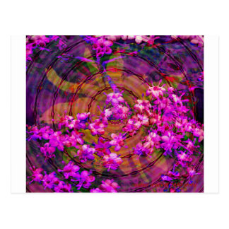 flower-11-2010-remix-96-dpi.jpg ポストカード