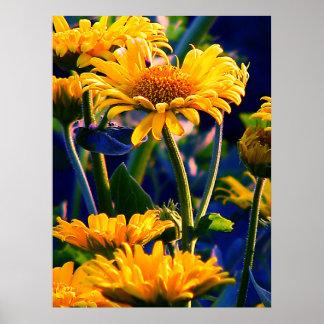 - Flowerpower-ポスター ポスター