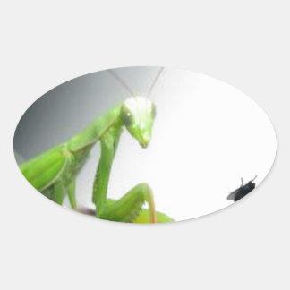 fly.jpgのカマキリ 楕円形シール