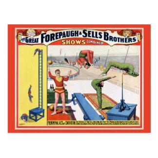 Forepaugh及び販売法の兄弟のヴィンテージのサーカスポスター ポストカード